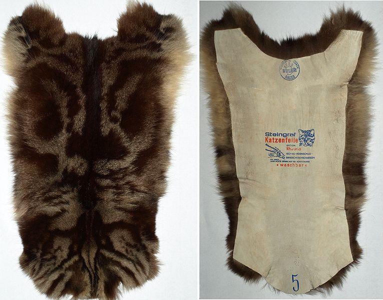 Cat Fur Hats For Cats