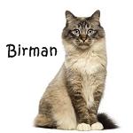 Birman More