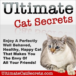 UltimateCat